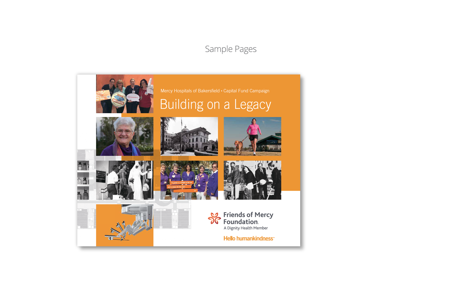 DMI Agency creates Capital Campaign Brochure for Dignity Health_cover