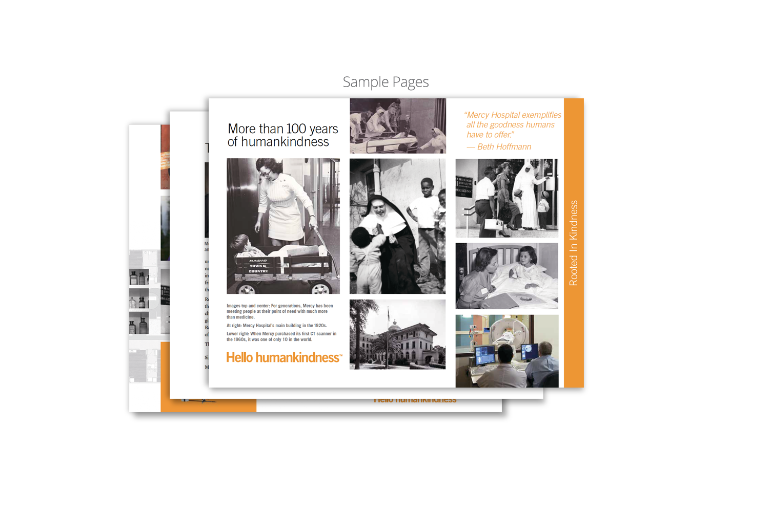 Capital Campaign Brochure for Dignity Health_sample page 2