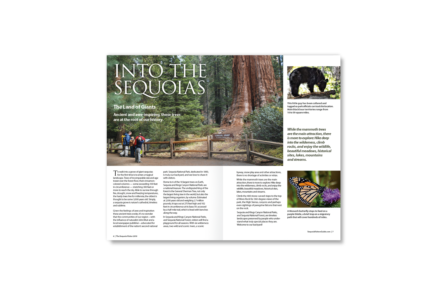 DMI Agency, design and production of Sequoia Visitors Guide 2019_inside pages